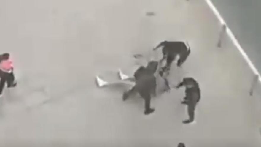 Brutal agresión con armas en pleno centro de Castellón