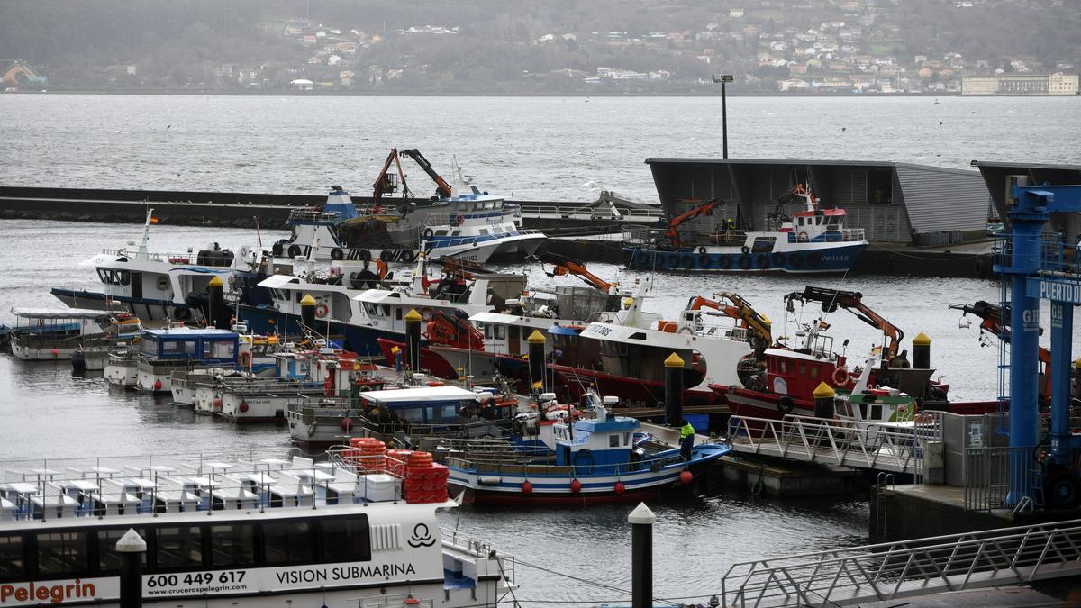 Flota de bajura amarrada en Combarro el pasado enero.