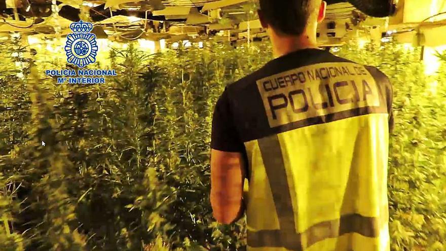 Catorce detenidos en la provincia por enviar droga a Alemania en camiones de fruta