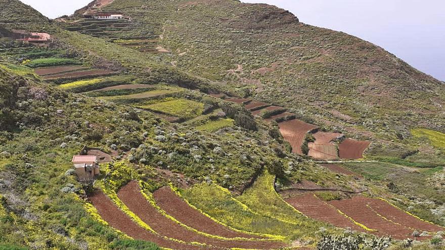 """Asaga pide fondos UE para un sector hortofrutícola en """"situación dramática"""""""
