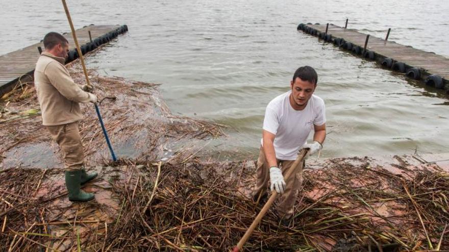 Champagne y calentamiento global: El cambio climático empieza en El Palmar