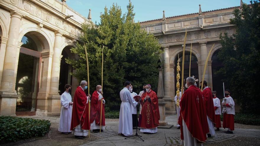 """Domingo de Ramos en Zamora: """"La Pasión está presente con nuestras cofradías y nuestra gente"""", dice el obispo"""