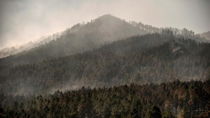 Los incendios en Galicia arrasan en pleno octubre y en 11 días casi 1.500 hectáreas