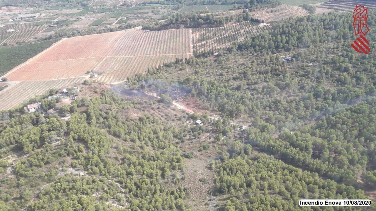 Arde una zona forestal de l'Ènova