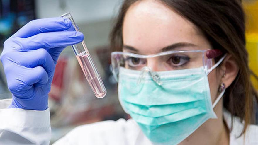 Identifiquen dues noves molècules marines amb potencial terapèutic contra l'Alzheimer