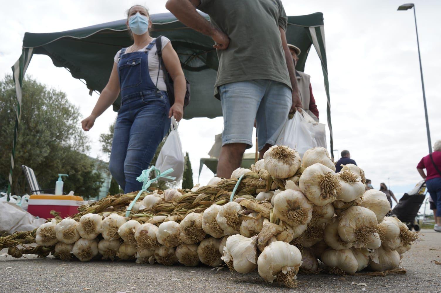 GALERÍA | La Feria del Ajo triunfa en Zamora: buena producción y colas para llegar a Ifeza