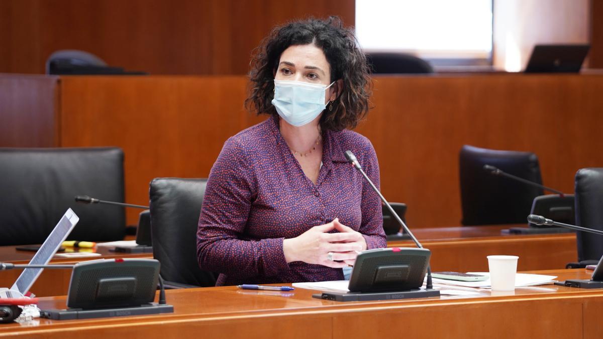 Erika Sanz, esta semana en las Cortes de Aragón.