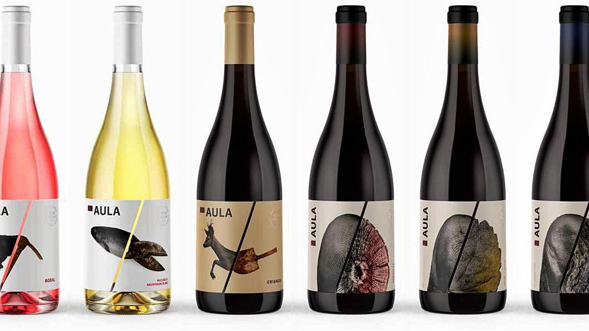 Imagen de la nueva gama de vinos Aula, disponible en  restauración y vinotecas.