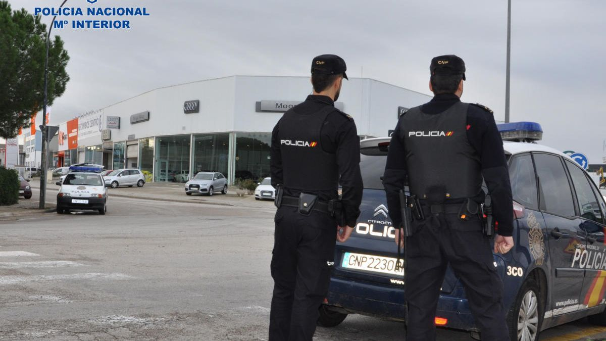 Agentes de la Policía Nacional durante una actuación en Mallorca.