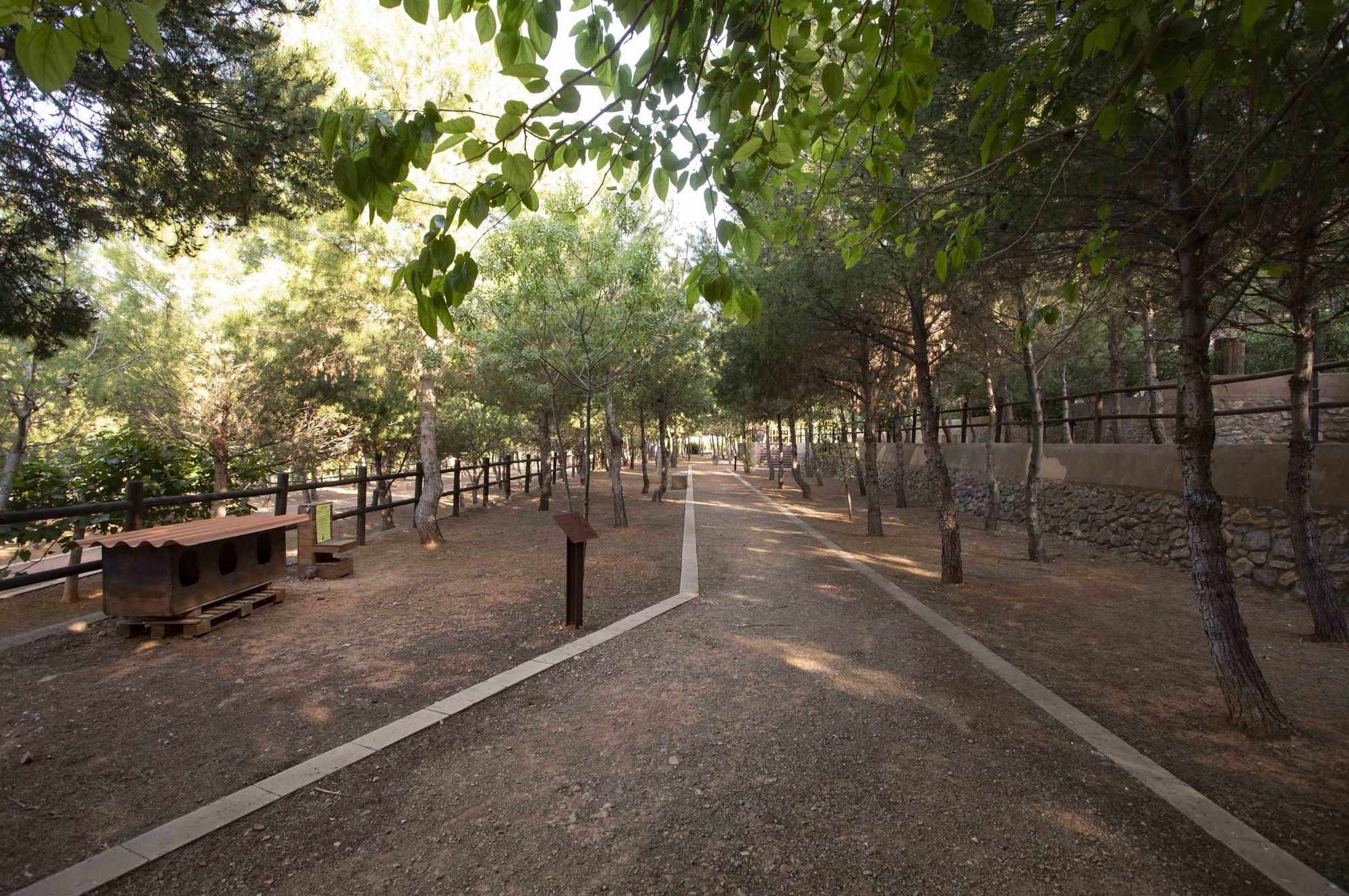 Parque de la Rodana, Faura  (2).JPG