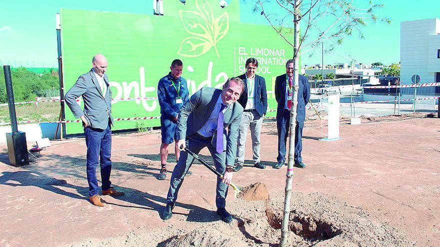 Primer árbol del campus de Elis en Montevida