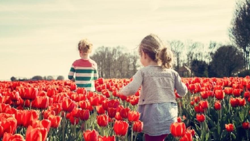 VIRTUAL Spring Hub