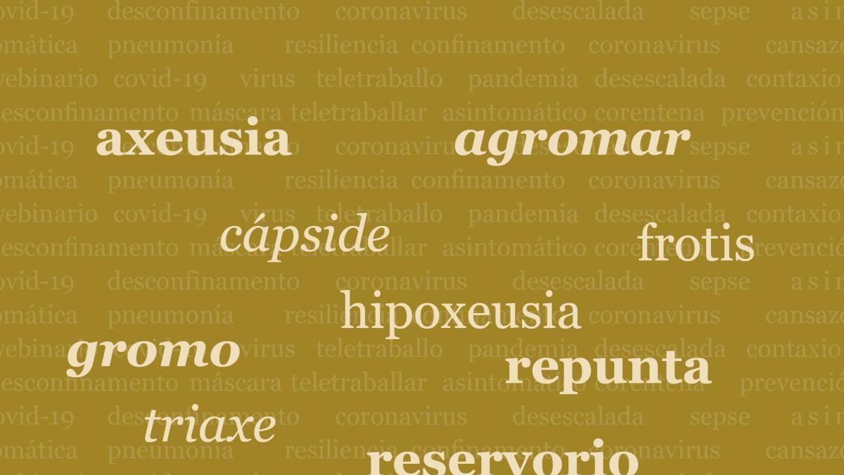 As novas palabras do coronavirus que a RAG incopor ao dicionario