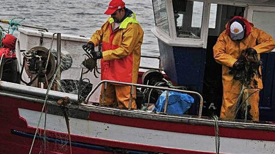 La flota gallega captura un 19% menos de centolla en lo que va de campaña