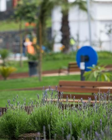 Abre el Parque Opuntia en Tenerife