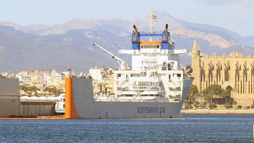 Tödlicher Unfall im Hafen von Palma de Mallorca