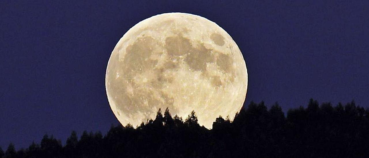 Luna llena.  |