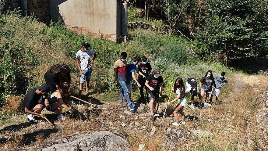 La juventud de Zamora es un ejemplo de compromiso con el medio rural