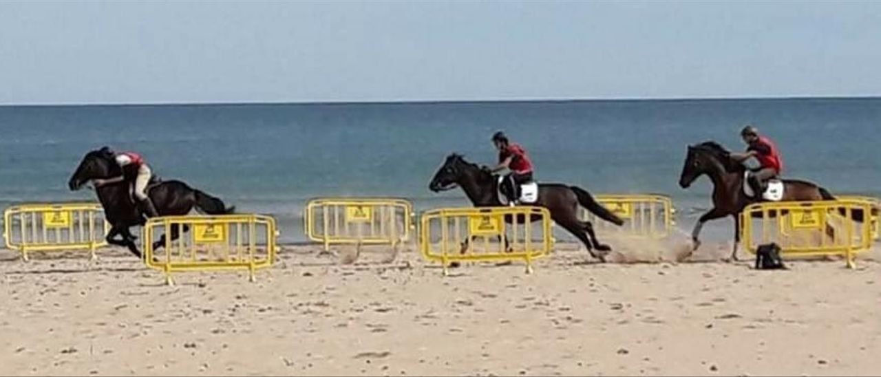 Imatge d'una correguda de cavalls a la platja d'Oliva.