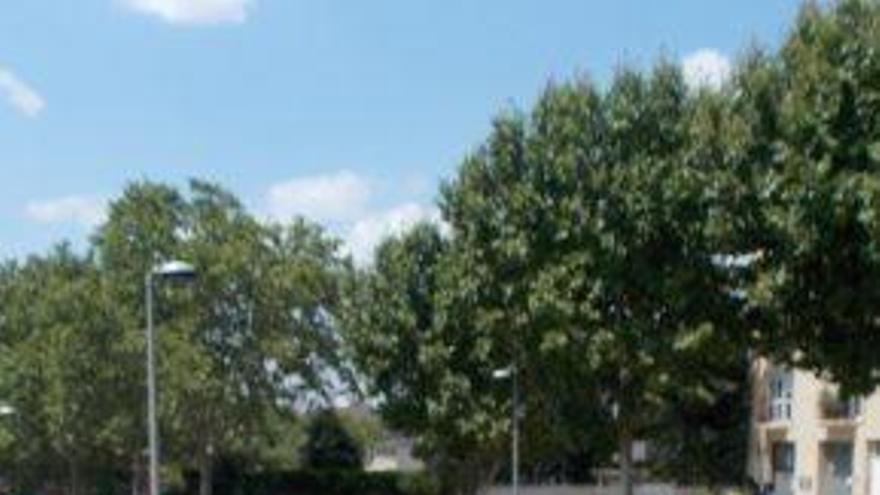 El pla de xoc de calçades deixa per a l'agost Passeig, Bases i els vials amb més enrenou