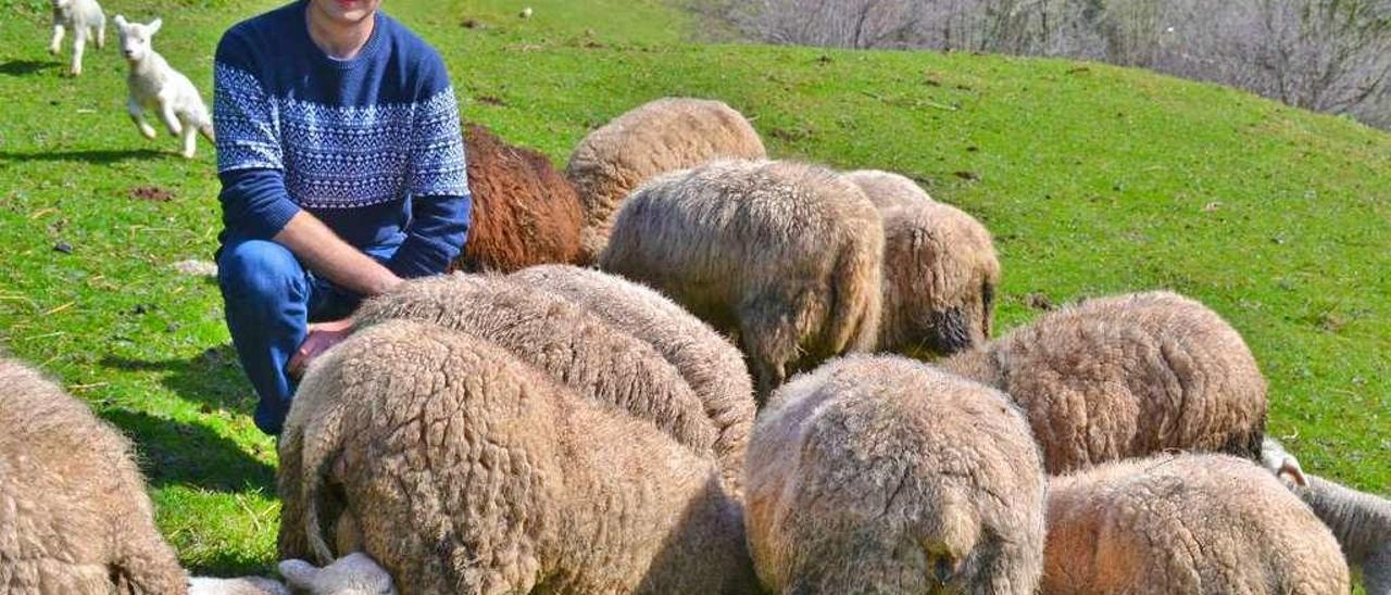 Álvaro Fernández García, con algunas de sus ovejas, en el pueblo de Dosango (Santo Adriano de Tuñón).