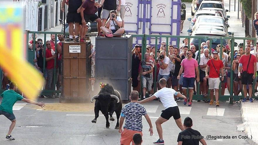 Canet estrenará en Morvedre los 'bous al carrer' post-covid