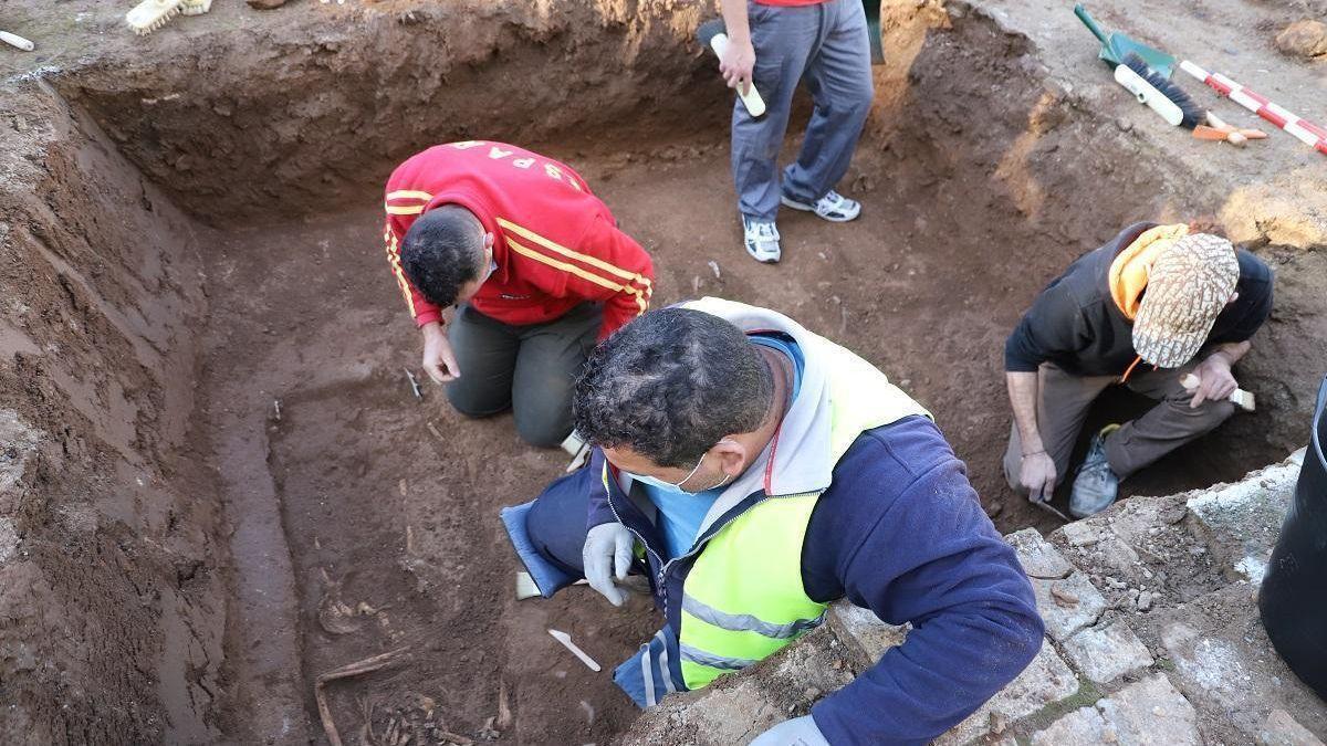 Trabajos de exhumación en una fosa de la provincia.