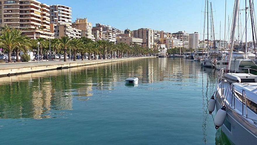El puerto de Palma estrena un robot de limpieza del agua marítima
