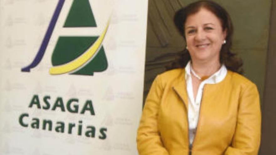 Asaga pide al Ministerio un plan para evitar el perjuicio al sector platanero