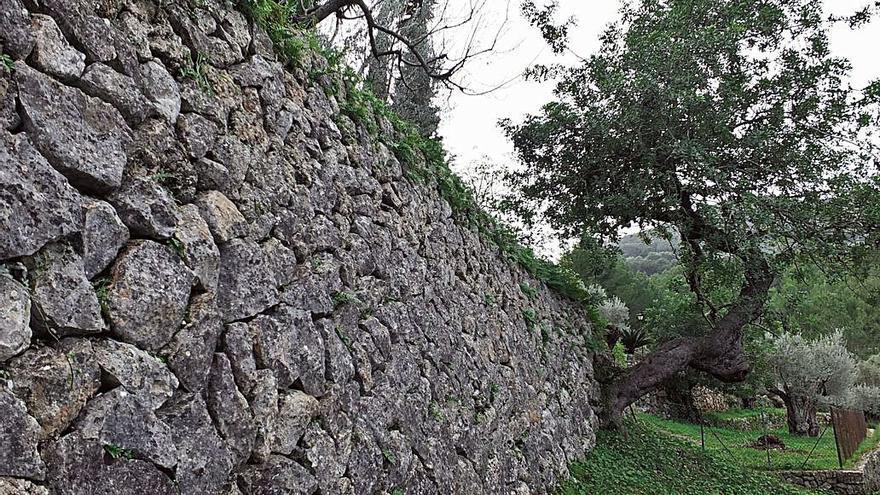 Acto del 10º aniversario de la Serra de Tramuntana como Patrimonio de la Humanidad