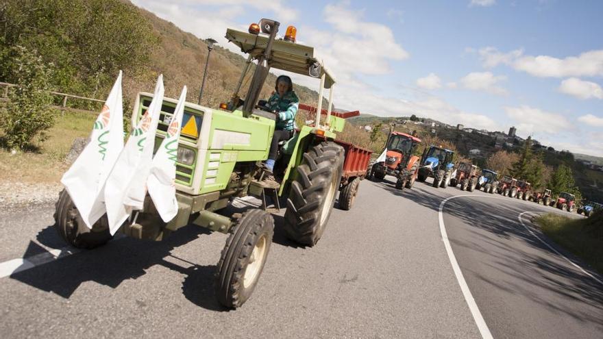 """Agricultores exigen """"ayudas directas"""" a la Xunta ante """"graves pérdidas"""" por la sequía y las heladas"""