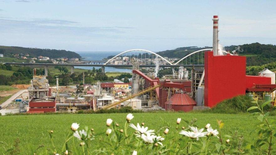 Ence creará más de 200 empleos en Navia hasta 2023, el doble de lo previsto inicialmente