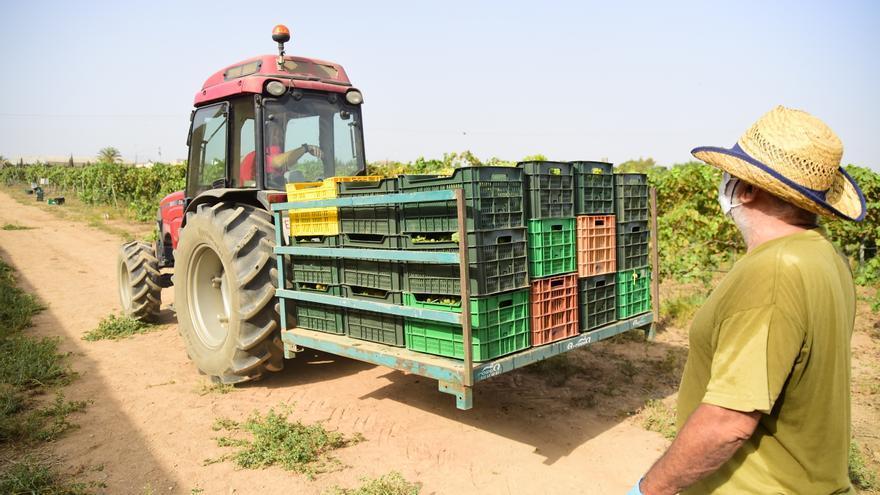 La Junta ayuda con 2,5 millones a la orientación agraria, forestal y pymes