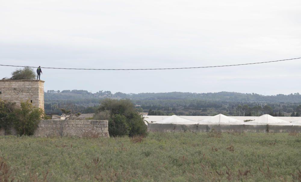 Más de 20 detenidos en una gran operación antidroga en Mallorca y la península