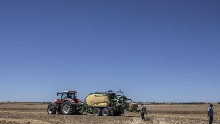Más de 8.500 agricultores zamoranos reciben el primer anticipo de la PAC