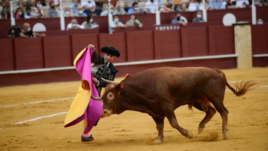 Novillada en La Malagueta de la Feria taurina de Málaga