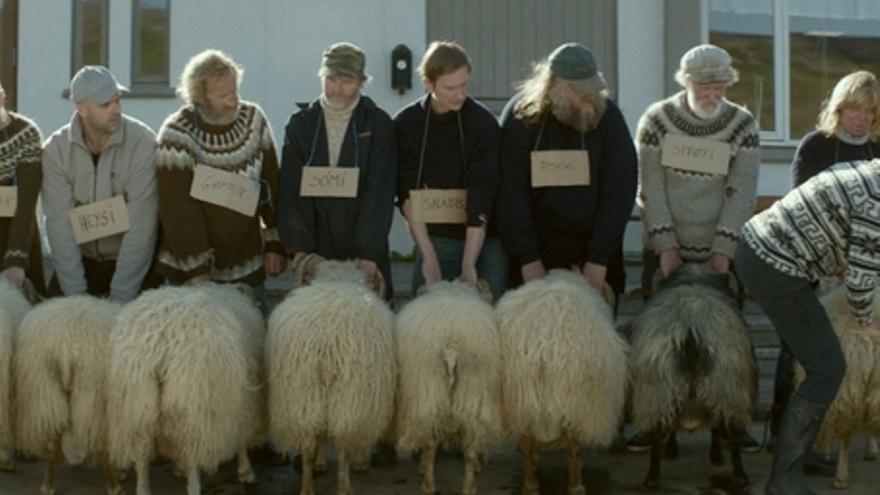 Rams. El valle de los carneros