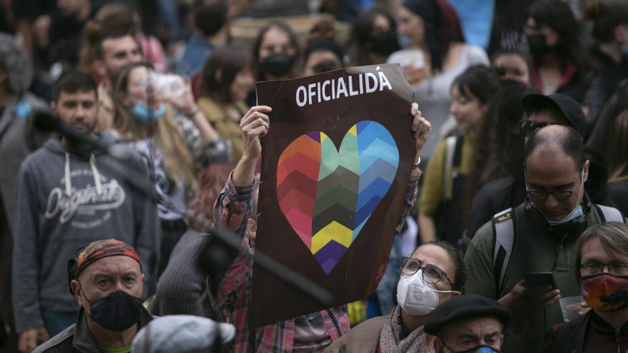 En imágenes: así fue la manifestación por la oficialidad del asturiano
