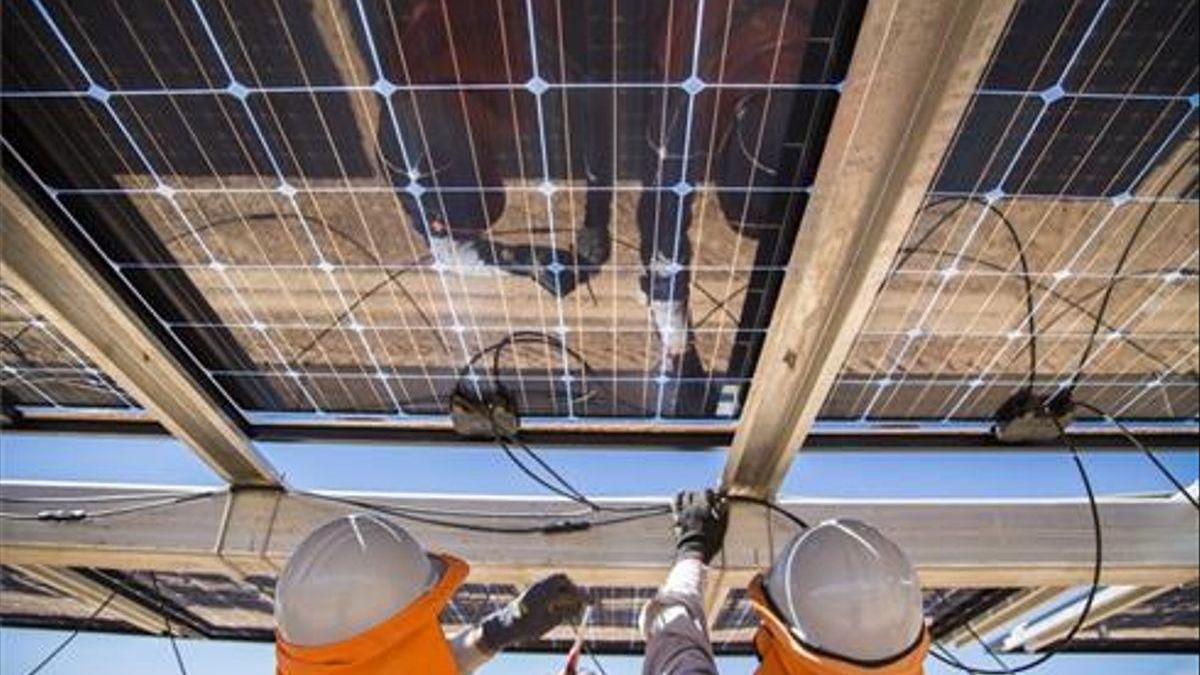 Placas solares de la empresa Soltec (Murcia).