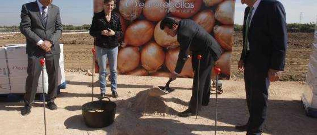 Eurocebollas duplicará su plantilla tras invertir nueve millones en la nueva planta