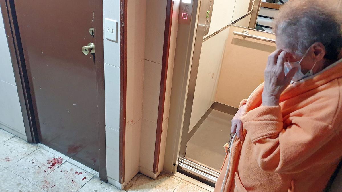 Operan de urgencia a una nonagenaria tras el ataque de un perro en Vigo.