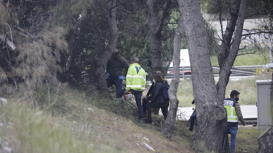 Hallan un cadáver descompuesto en una rotonda de Mallorca