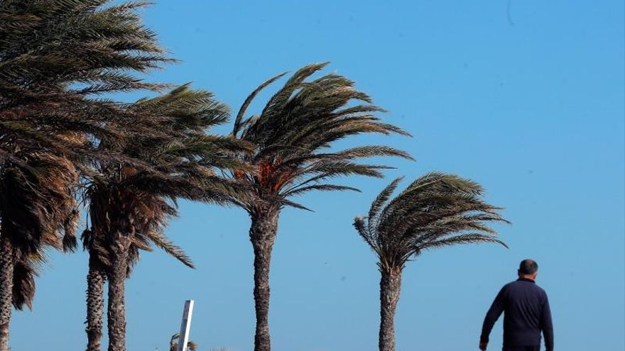 El viento del nordeste perderá intensidad este miércoles en Canarias