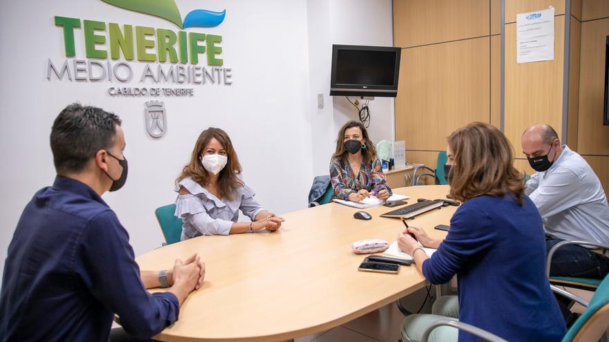 El Cabildo pide más fondos al Estado para luchar contra la termita invasora