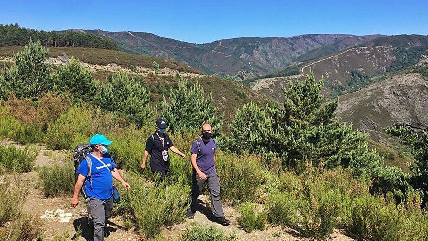 Voluntarios que ayudan a regenerar el bosque autóctono