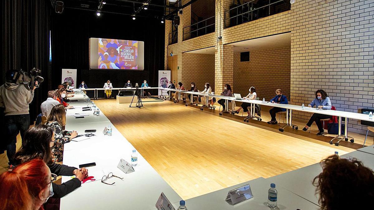 La consejera de Igualdad, Isabel Blanco, al fondo, durante la  sesión extraordinaria del Consejo Regional de la Mujer celebrada ayer en Burgos. | Ical