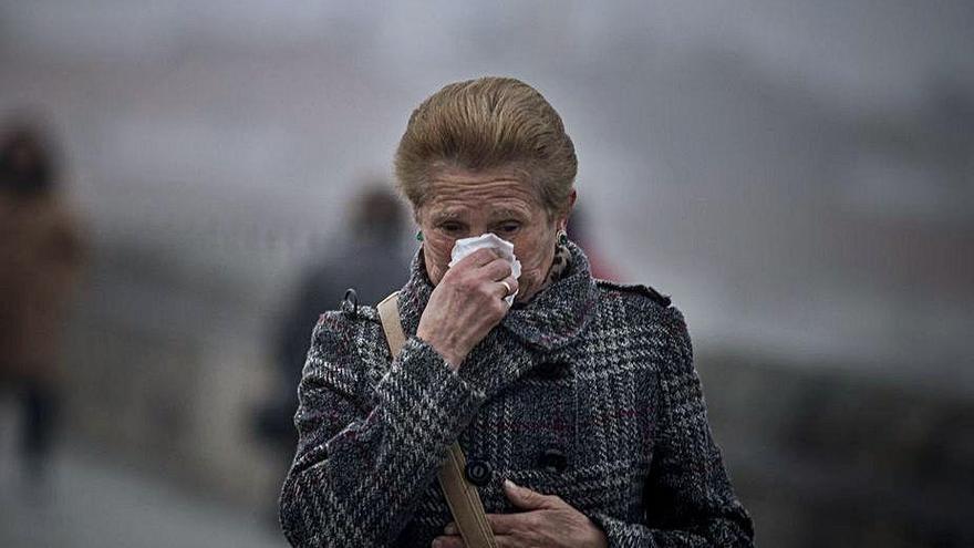 """El coronavirus del resfriado pudo generar """"inmunidad cruzada"""" al SARS-COV-2"""