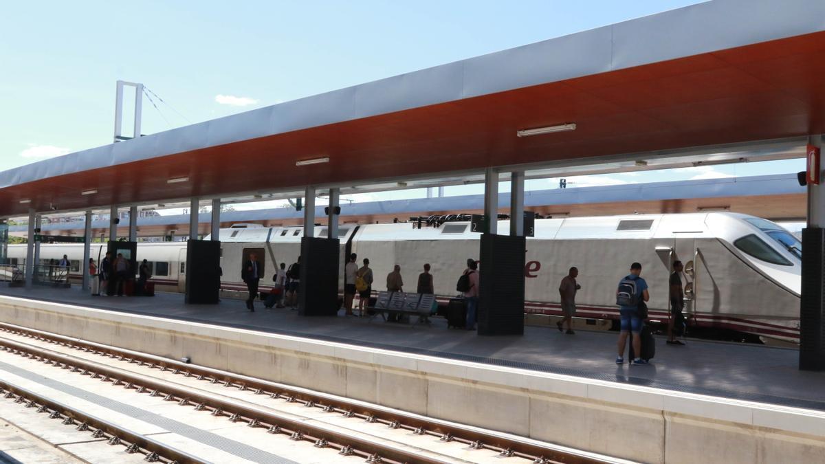 Viajeros del tren a Madrid