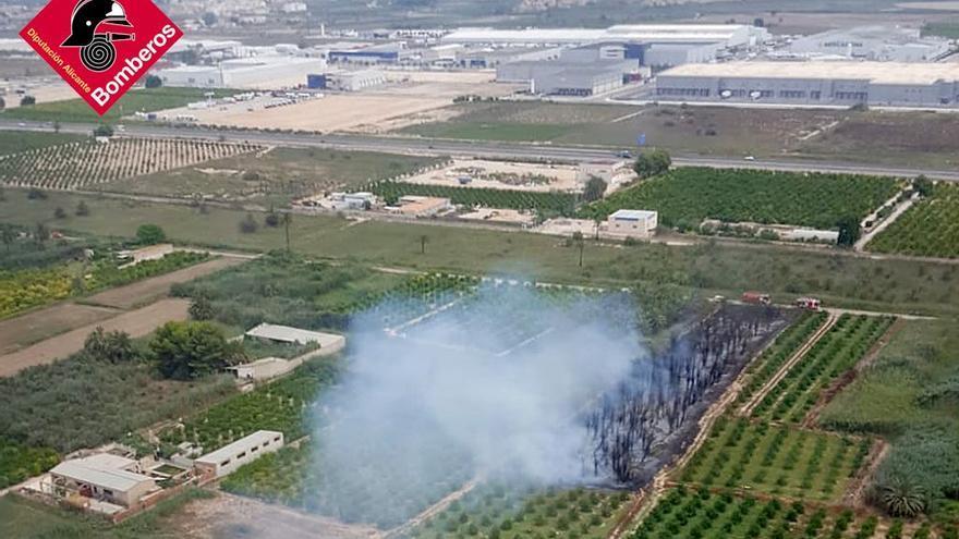 Bomberos intervienen en un incendio de palmeras y matorral en la A-7 a la altura de Albatera
