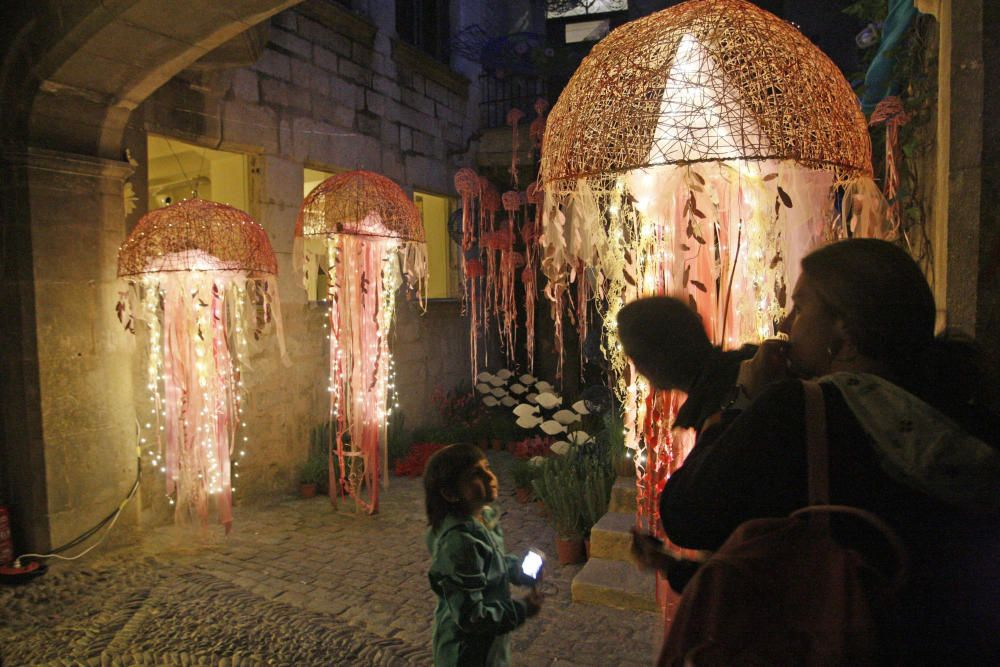 Els muntatges de Temps de Flors van estar oberts fins ben entrada la nit